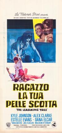 The Learning Tree - 11 x 17 Movie Poster - Italian Style A