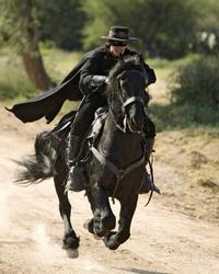 The Legend of Zorro - 8 x 10 Color Photo #16