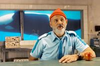 The Life Aquatic with Steve Zissou - 8 x 10 Color Photo #7