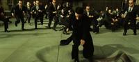 The Matrix Reloaded - 8 x 10 Color Photo #24
