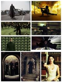 The Matrix Reloaded - Set of 49 - 8 x 10 Color Photos