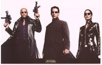The Matrix Reloaded - Movie Poster - 24 x 36 - Style A