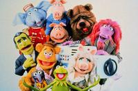 The Muppet Show - 8 x 10 Color Photo #1