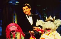 The Muppet Show - 8 x 10 Color Photo #4