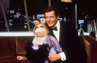 The Muppet Show - 8 x 10 Color Photo #8