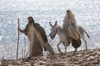 The Nativity Story - 8 x 10 Color Photo #20