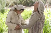 The Nativity Story - 8 x 10 Color Photo #22