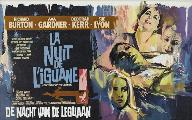 The Night of the Iguana - 27 x 40 Movie Poster - Belgian Style A
