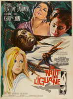 The Night of the Iguana - 27 x 40 Movie Poster - French Style B