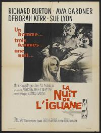 The Night of the Iguana - 27 x 40 Movie Poster - French Style A