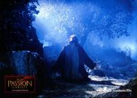 The Passion of the Christ - 8 x 10 Color Photo #1