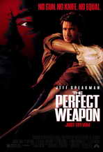 The Perfect Weapon - 11 x 17 Movie Poster - Style B