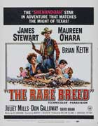 The Rare Breed - 11 x 17 Movie Poster - Style B