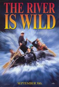 The River Wild - 27 x 40 Movie Poster - Style B