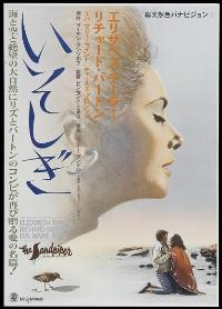 The Sandpiper - 11 x 17 Movie Poster - Japanese Style A