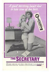 The Secretary - 27 x 40 Movie Poster - Style A