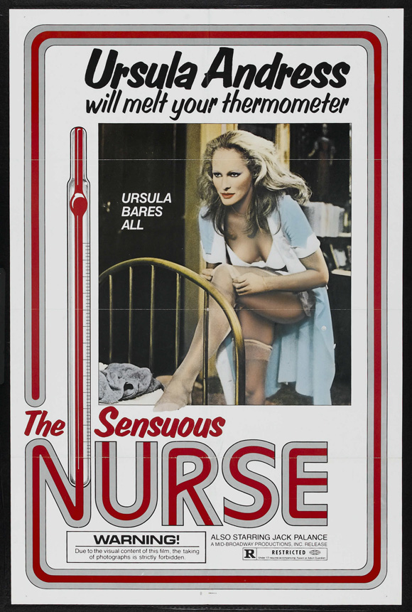 The Sensuous Nurse movie