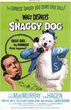 The Shaggy Dog - 11 x 17 Movie Poster - Style A
