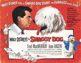 The Shaggy Dog - 11 x 14 Movie Poster - Style A