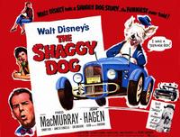 The Shaggy Dog - 11 x 14 Movie Poster - Style C