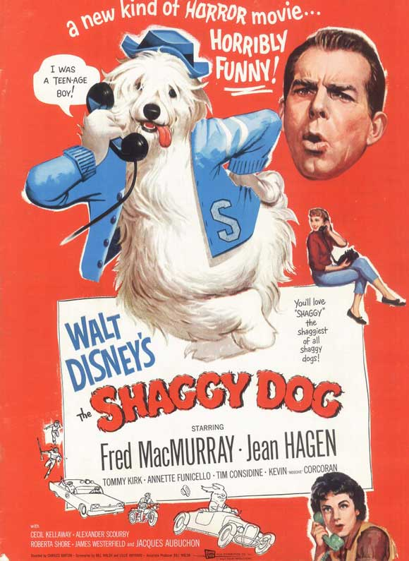 the shaggy dog movie posters from movie poster shop