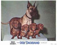 The Ugly Dachshund - 11 x 14 Movie Poster - Style F
