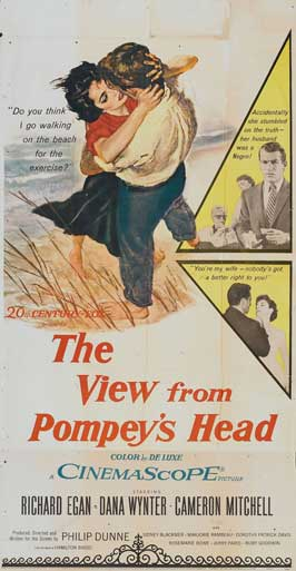 The View from Pompey's Head - 14 x 36 Movie Poster - Insert Style A