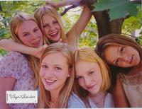 The Virgin Suicides - 11 x 14 Poster French Style H
