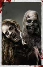 The Walking Dead (TV) - 27 x 40 Movie Poster - Style C