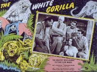 The White Gorilla - 11 x 14 Movie Poster - Style D