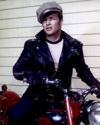 The Wild One - 8 x 10 Color Photo #1