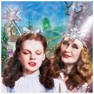 The Wizard of Oz - Dorothy and Glinda Canvas Art