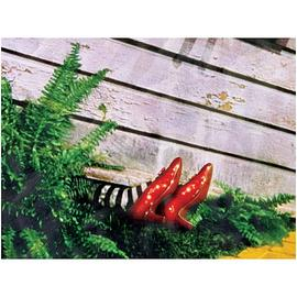 The Wizard of Oz - Wicked Witch of the East Canvas Print