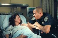 Third Watch - 8 x 10 Color Photo #53