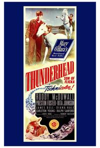 Thunderhead - Son of Flicka - 27 x 40 Movie Poster - Style A