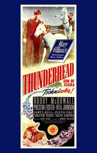 Thunderhead - Son of Flicka - 43 x 62 Movie Poster - Bus Shelter Style A