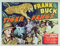 Tiger Fangs - 11 x 14 Movie Poster - Style A