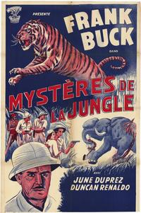 Tiger Fangs - 27 x 40 Movie Poster - French Style A