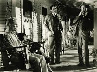 To Kill a Mockingbird - 8 x 10 B&W Photo #5