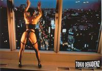 Tokyo Decadence - 11 x 14 Poster German Style E