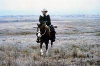 Tom Horn - 8 x 10 Color Photo #18