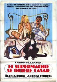 Travolto dagli affetti familiari - 27 x 40 Movie Poster - Italian Style A