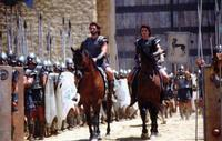 Troy - 8 x 10 Color Photo #73