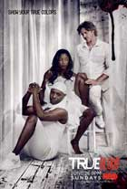 True Blood (TV) Season 4 - 27 x 40 TV Poster - Style A