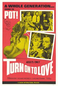 Turn On to Love - 27 x 40 Movie Poster - Style A