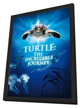 Turtle: The Incredible Journey - 11 x 17 Movie Poster - Style B - in Deluxe Wood Frame