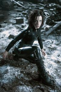 Underworld: Evolution - 8 x 10 Color Photo #13