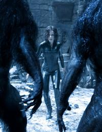 Underworld: Evolution - 8 x 10 Color Photo #19