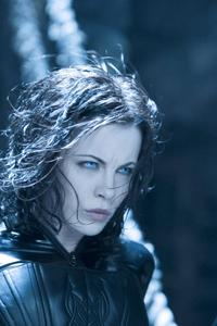 Underworld: Evolution - 8 x 10 Color Photo #24