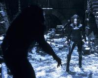 Underworld: Evolution - 8 x 10 Color Photo #36